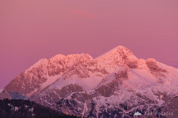At sunrise on Kranjska Reber - pink Mts. Kočna and Grintovec, the highest peak in the range