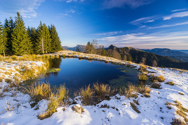 A pond on Kranjska Reber after sunrise