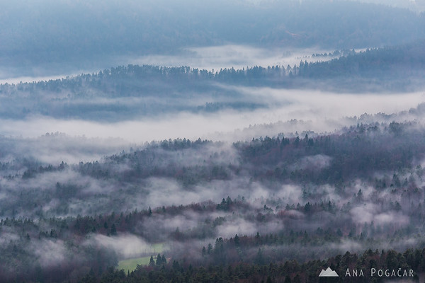 Foggy morning from Šmarjetna gora hill