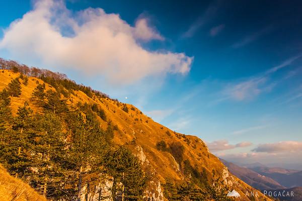 Slopes of Kamniški vrh