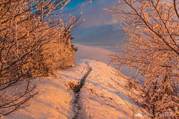 Last few meters leading to the top of Kamniški vrh