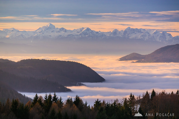 Looking west from Rakitovec: Fog in the valley, the Julian Alps in the background