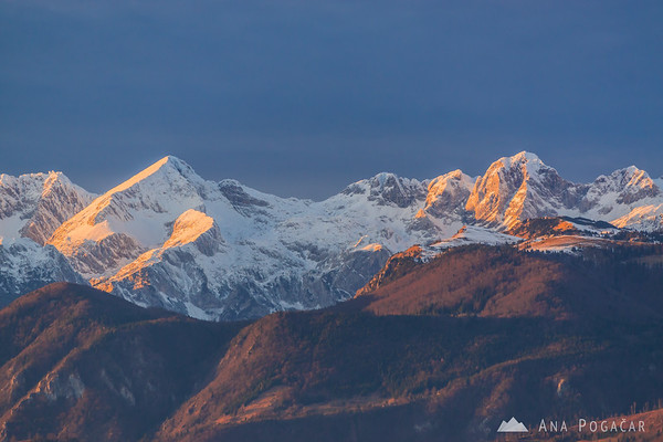View from Rakitovec before sunset: the Kamnik Alps: Mts. Kočna, Grintovec, Dolgi hrbet, Štruca, Skuta and Kranjska Rinka. Velika planina in the foreground.