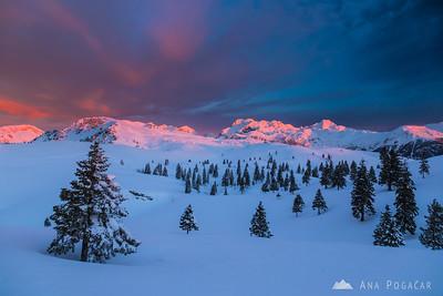 Pink sky above the Kamnik Alps before sunrise from Velika planina