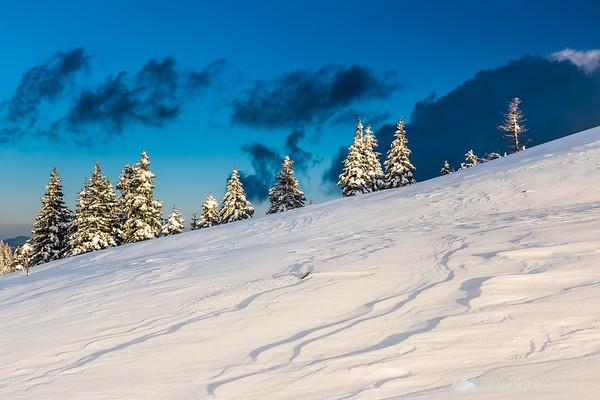 Patterns in snow on Velika planina