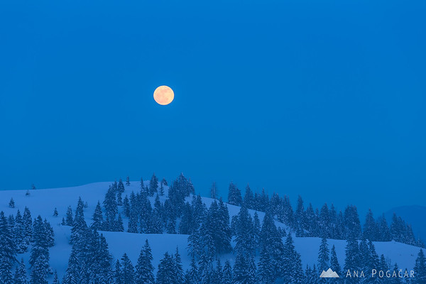 The full moon on Velika planina