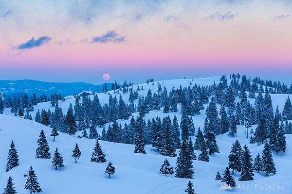 Alpenglow and the full moon on Velika planina