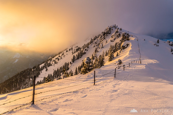 Around sunset on Velika planina