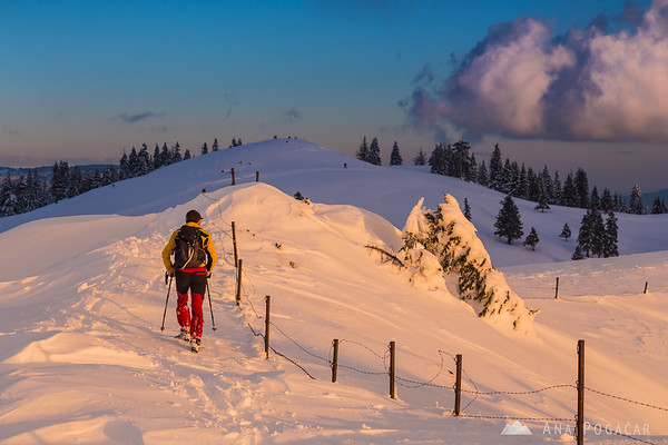 A lonely hiker at Poljanski rob on Velika planina at sunset