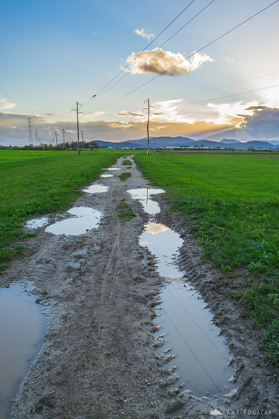A walk in the fields near Kamnik