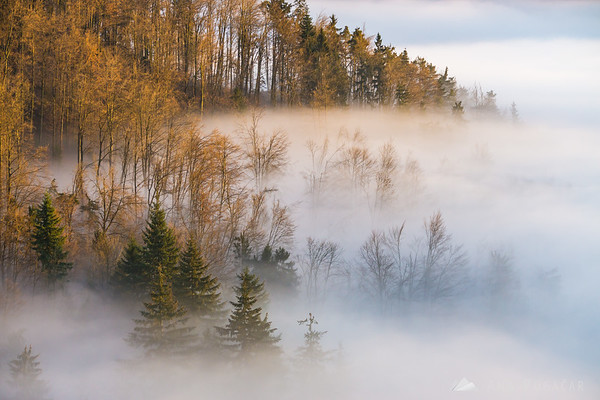 View from Stari grad hill above Kamnik with the fog in the valley