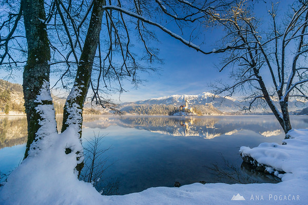 Snowy Lake Bled in morning light