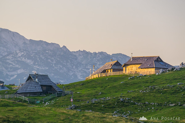 Velika planina in late afternoon light