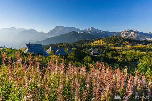 Classic view of the Velika planina cottages with the Kamnik Alps in the background