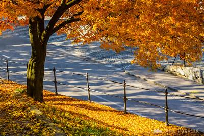 Morning stroll in Kamnik - Nov 3, 2015