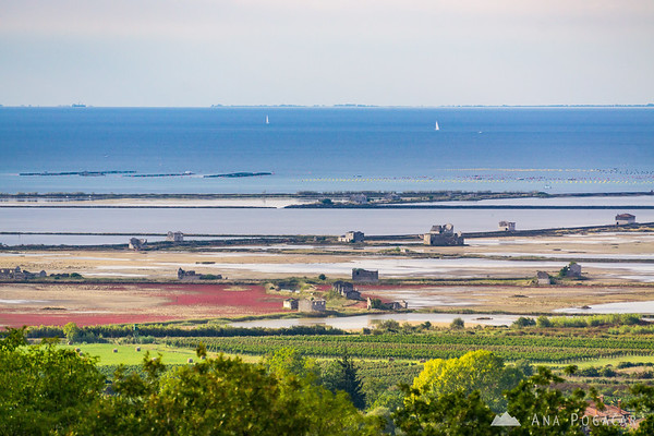 Views of the Sečovlje salt pans from Croatia