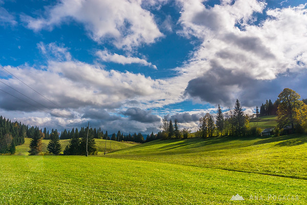 Puffy white clouds over the Pokljuka plateau