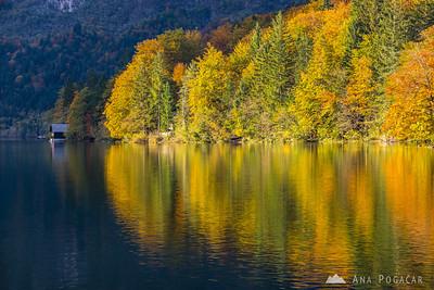 Lake Bohinj in late afternoon light
