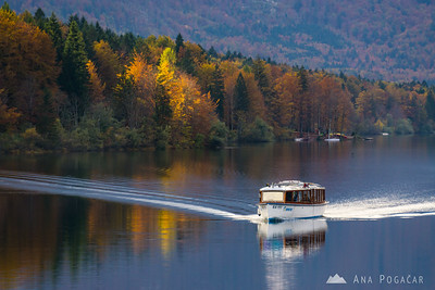 A boat on Lake Bohinj in late afternoon light