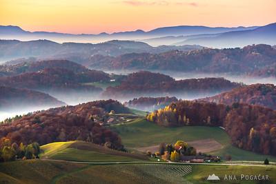 Fall colors in Slovenske gorice - Nov 2015