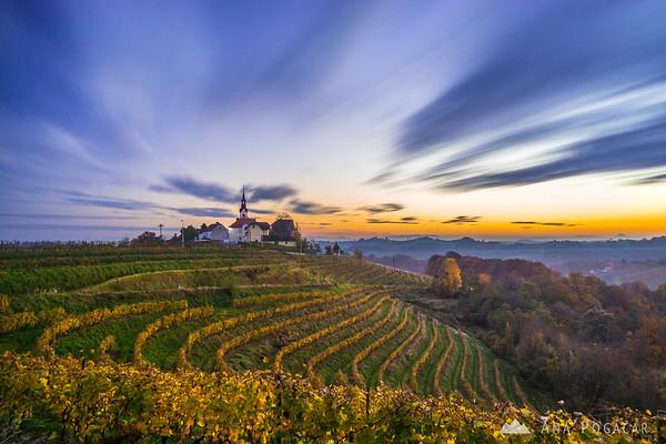 Sunset in the vineyards of Jeruzalem/Svetinje, Slovenske gorice region