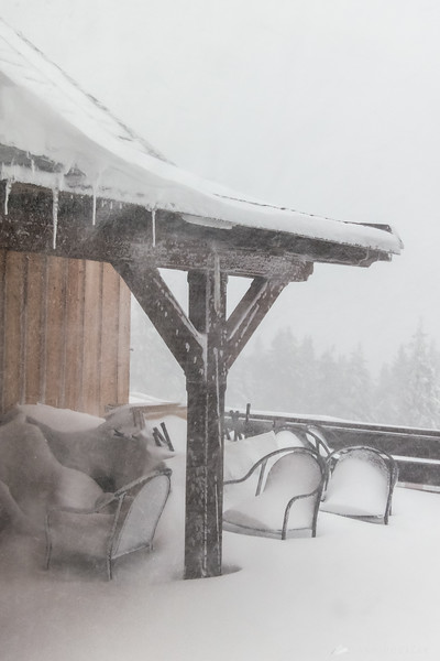 Snowstorm on Rogla - Jan 30, 2015