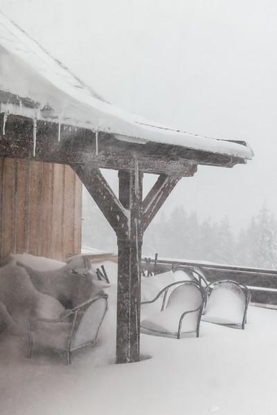 Snowstorm on Rogla