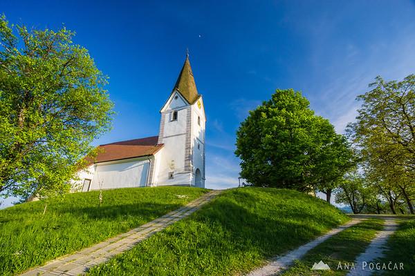 Late afternoon in Kozjansko