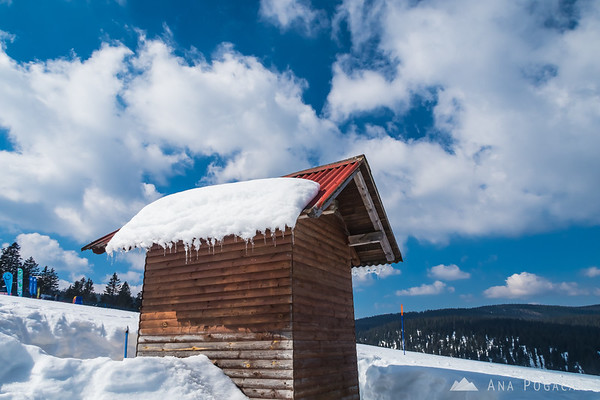 Skiing on the sunny slopes of Rogla