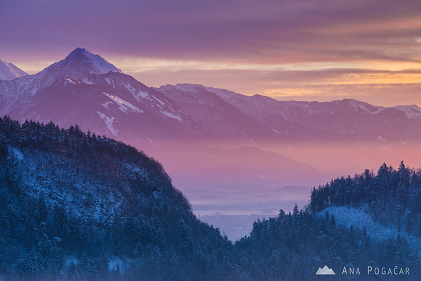 Magical winter sunrise from Osojnica hill above Lake Bled