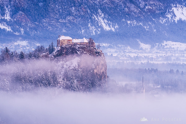 Snowy Bled Castle at dawn