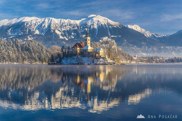 Snowy Lake Bled in morning light
