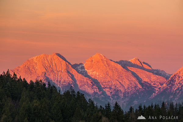 The Kamnik Alps from Črni vrh at sunset