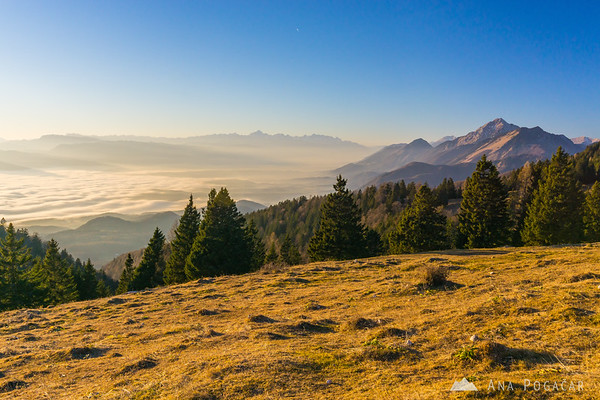 Looking from Planina Jezerca towards the west - you can see Mt. Triglav and Mt. Storžič