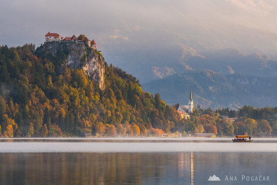 Peaceful and misty morning at Lake Bled