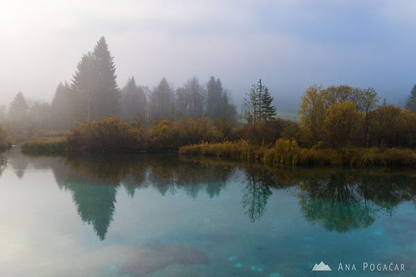 Zelenci at a foggy sunrise