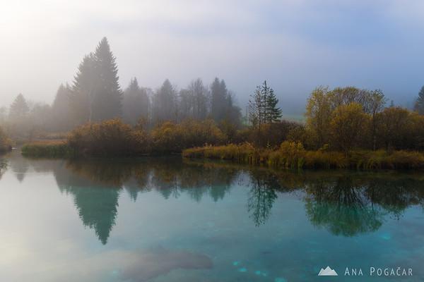 Zelenci at a foggy sunrise