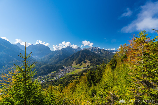 Views of Kranjska Gora from the forests above