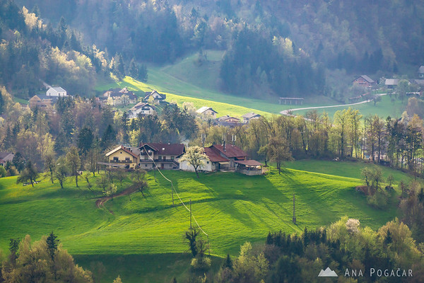 Views from Brezje village on a sunny spring afternoon