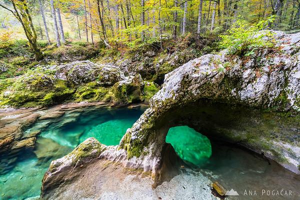 Mostnica river and the famous Elephant Rock (Slonček)