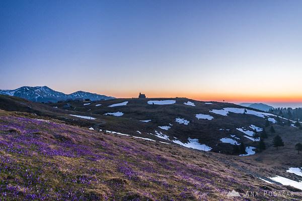 Dawn on Velika planina