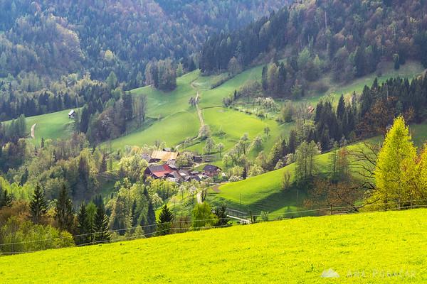 Views from Planina pod Golico