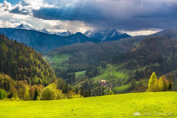 Views towards the Julian Alps from Planina pod Golico