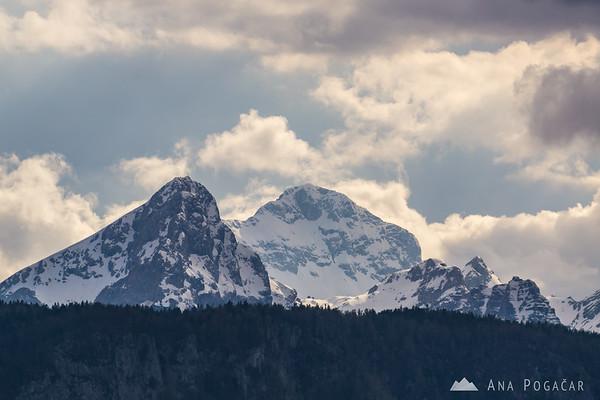Views towards the Julian Alps and Mt. Triglav from Planina pod Golico