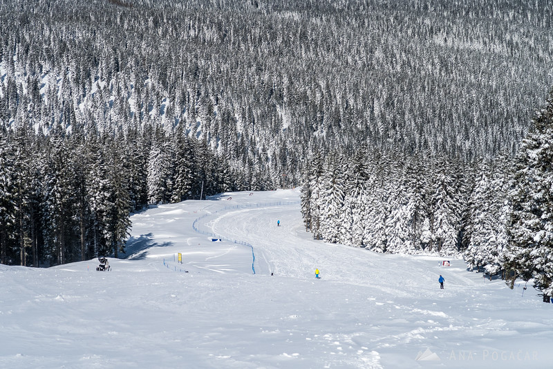 Skiing on Rogla