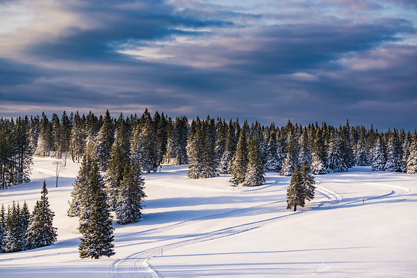 Rogla on a winter afternoon