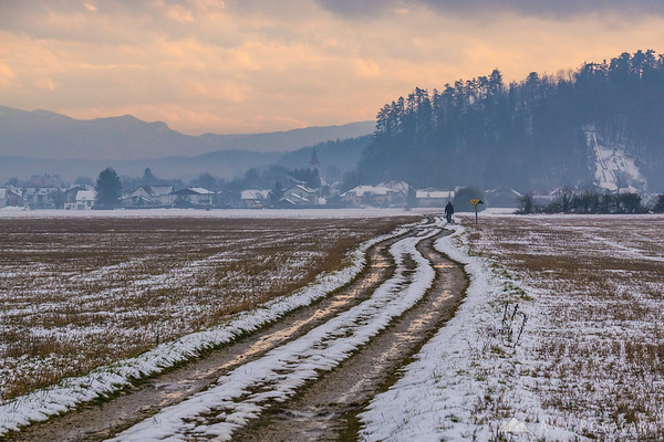 On the fields near Mengeš on a gloomy winter day