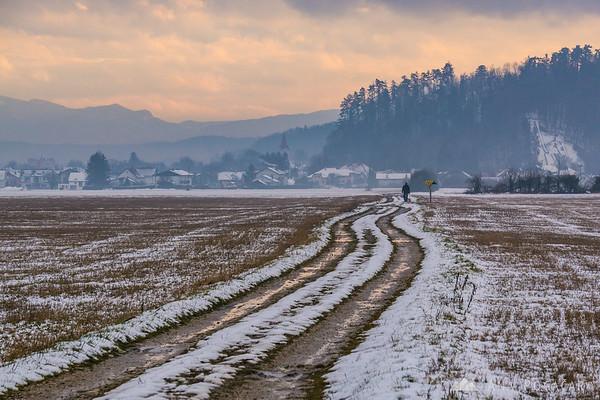 On the fields near Mengeš on a gloomy winter day