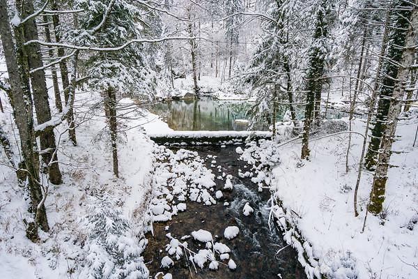 Snowy source of the Kamniška Bistrica River
