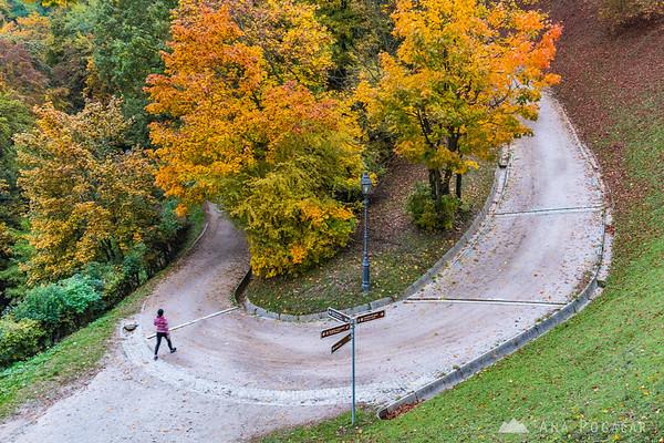 Fall colors on the Ljubljana Castle hill